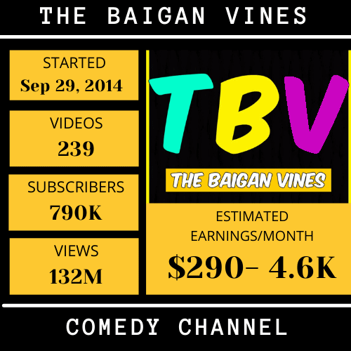 Baigan Vines-top youtubers income in hyderabad